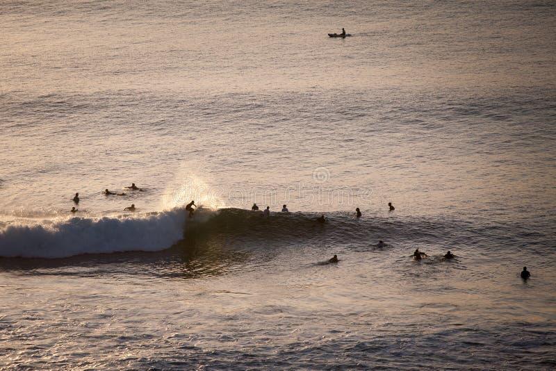 Серферы улавливают волны вечера в океане стоковые изображения rf