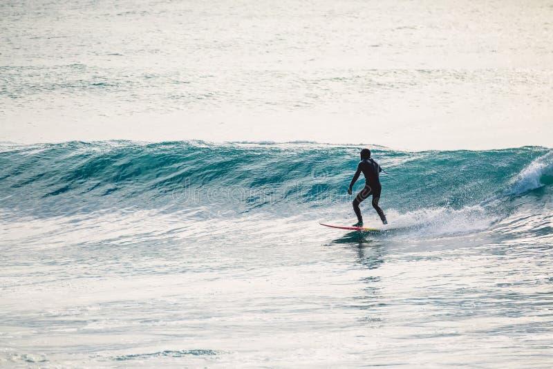 Серфер в езде мокрой одежды на голубой волне Зима занимаясь серфингом в океане стоковые изображения rf
