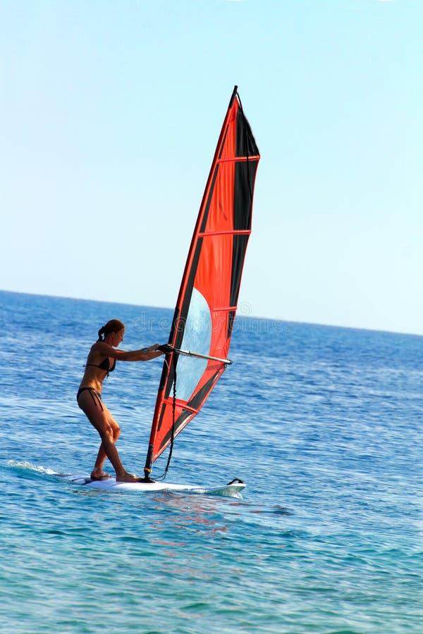 серфер девушки windsurf стоковые изображения rf