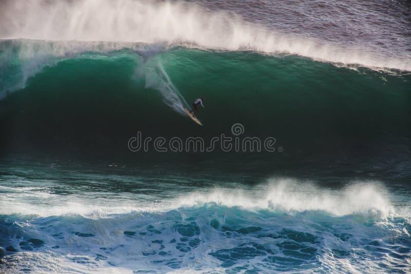 Серфер изображения на волне мэйвриков голубого океана большой в Калифорнии стоковое изображение rf