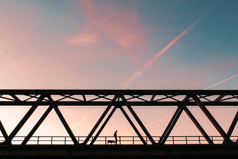 Серфер неба собаки идя стоковая фотография rf