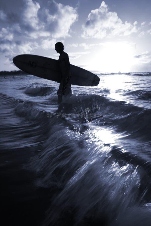серфер стоковые изображения