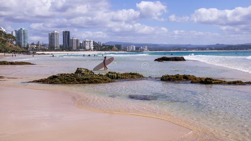 Серфинг на рае серферов стоковые фотографии rf