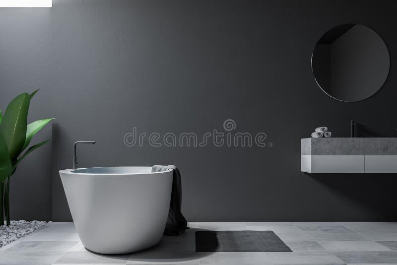 Серые большие ванная комната, ушат и раковина просторной квартиры бесплатная иллюстрация