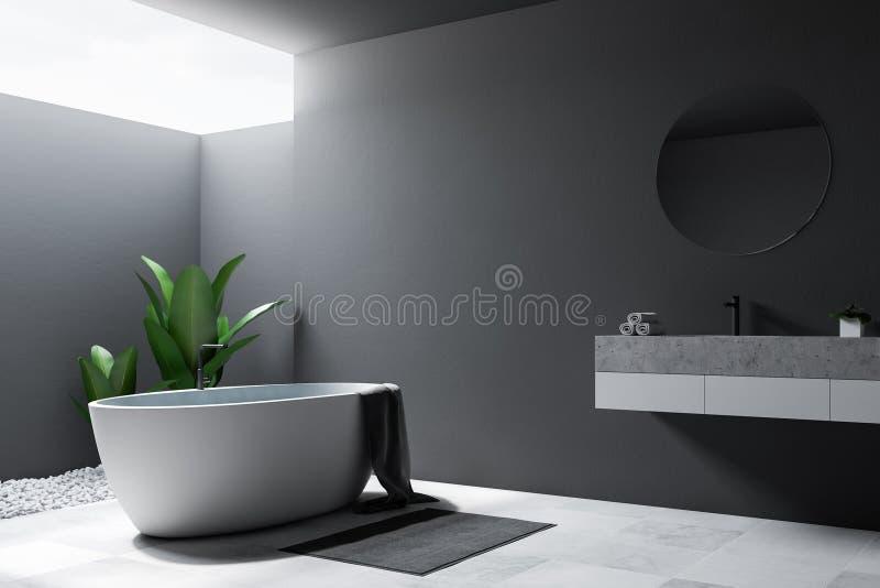 Серые большие угол, ушат и раковина ванной комнаты просторной квартиры бесплатная иллюстрация