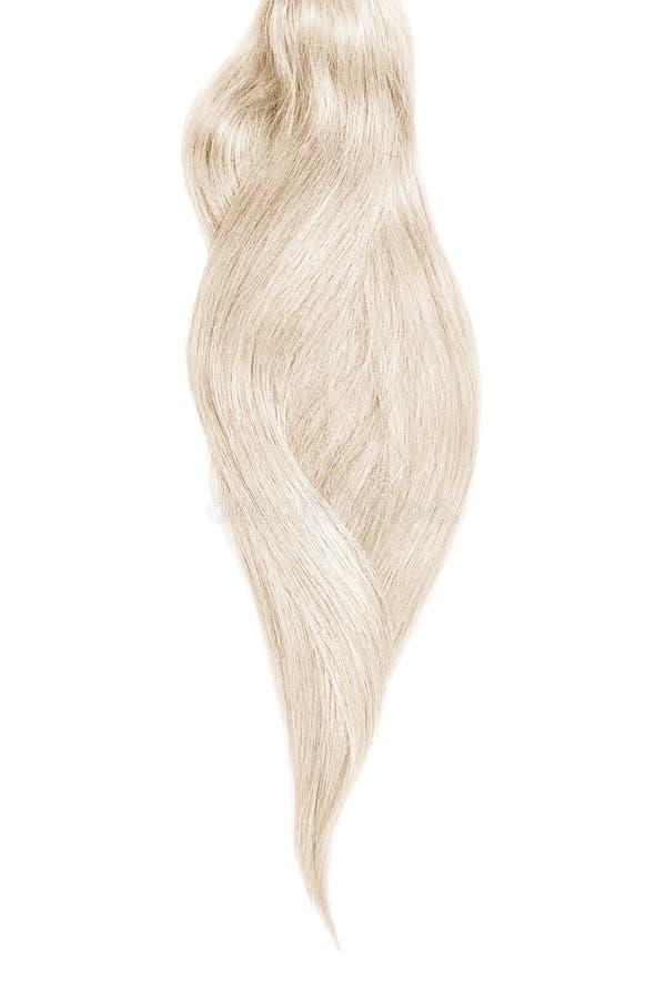 Серые волосы, изолированные на белой предпосылке Длинный красивый ponytail стоковое фото