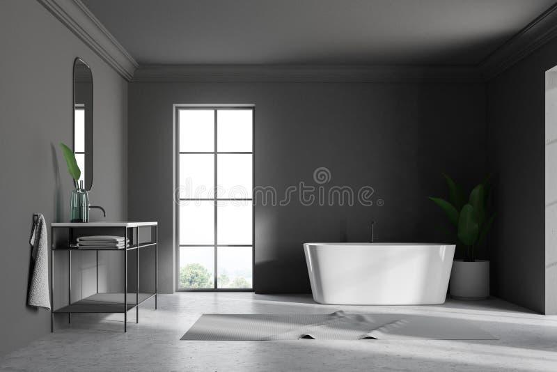 Серые интерьер, раковина и ушат ванной комнаты просторной квартиры бесплатная иллюстрация