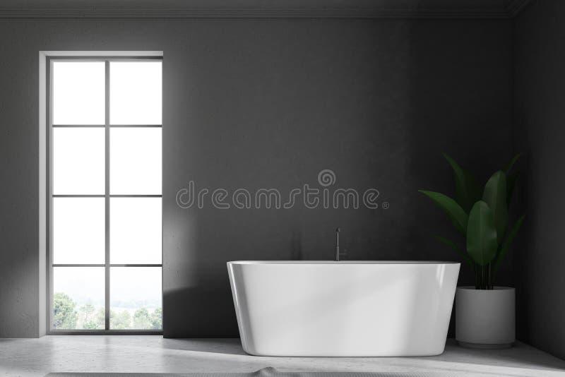 Серые интерьер, ушат и завод ванной комнаты просторной квартиры бесплатная иллюстрация