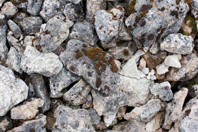Серые камни покрытые с мхом стоковые изображения