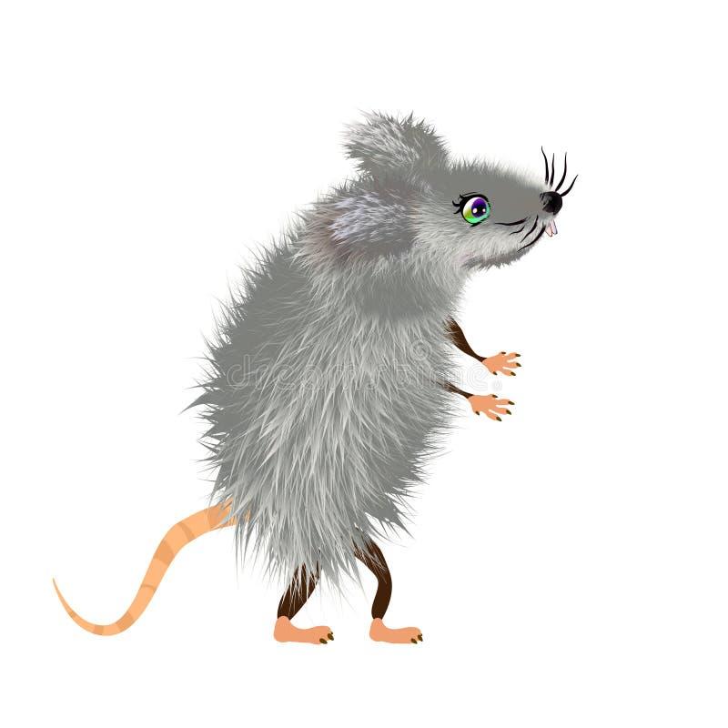 Серый пуховый мультфильм мыши, дикое мышей милое или домашнее животное, характер вектора Изолированная иллюстрация 2020 талисмана иллюстрация вектора