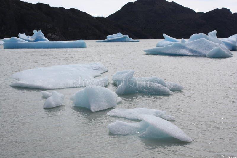 Серый цвет ледника, Патагония стоковая фотография rf