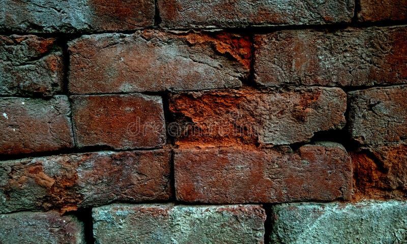 Серый цвет и коричневая затеняемая предпосылка grunge текстурированная стеной стоковое фото