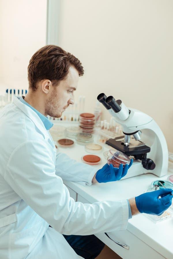 Серьезный молодой исследователь работая в лаборатории стоковое фото rf