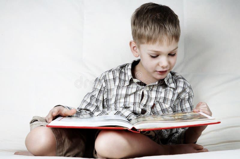 Серьезный читатель стоковое изображение rf
