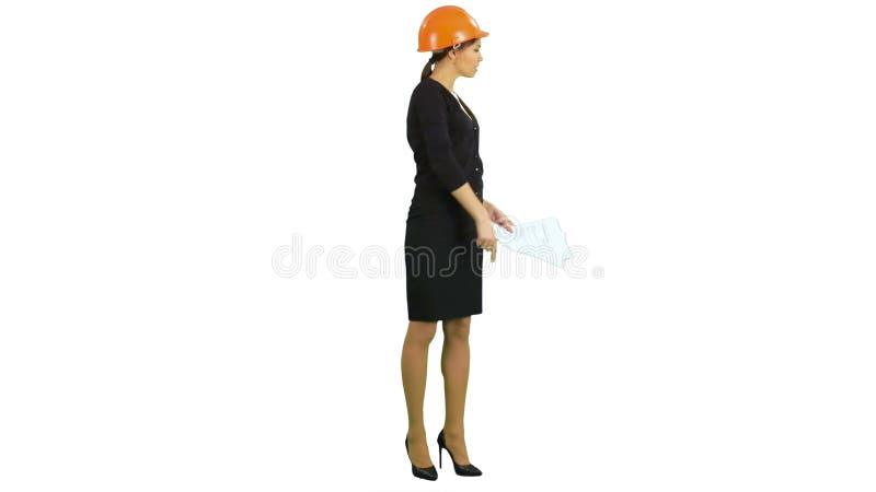 Сердитый женский заведущая конструкции держа документы и крича на работниках на белой предпосылке акции видеоматериалы