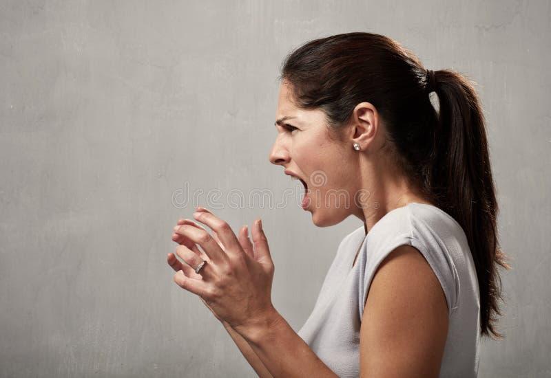 Сердитый профиль женщины стоковое изображение