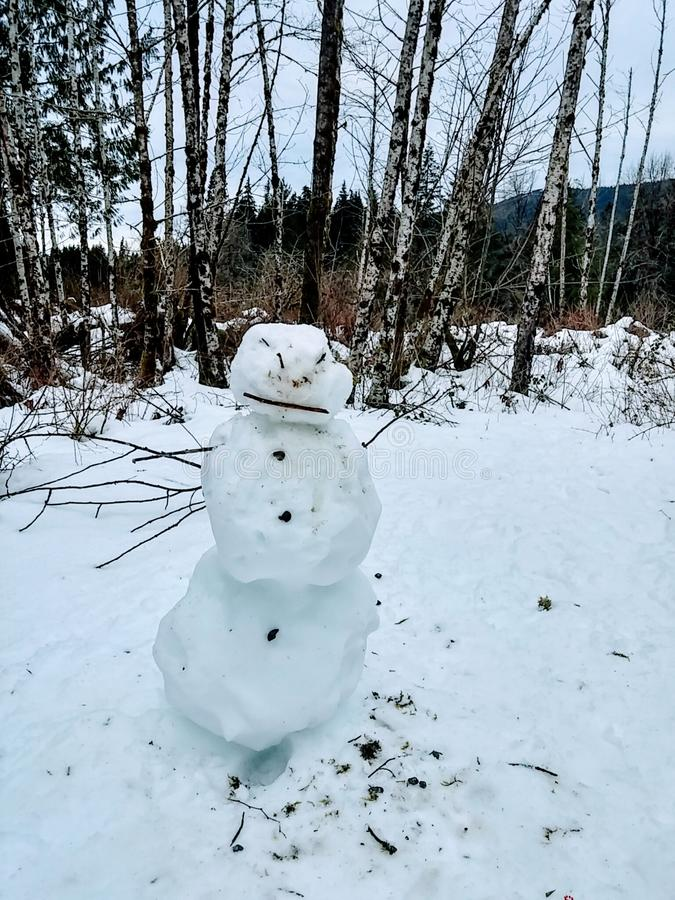 Сердитый снеговик 1 стоковое фото rf