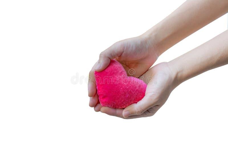 Сердце в изоляте руки стоковое фото