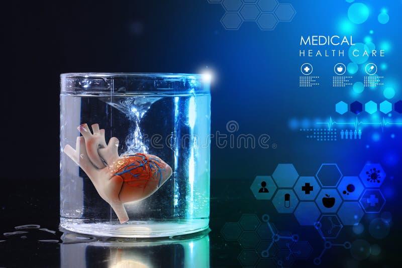 Сердце в стекле воды стоковое фото rf