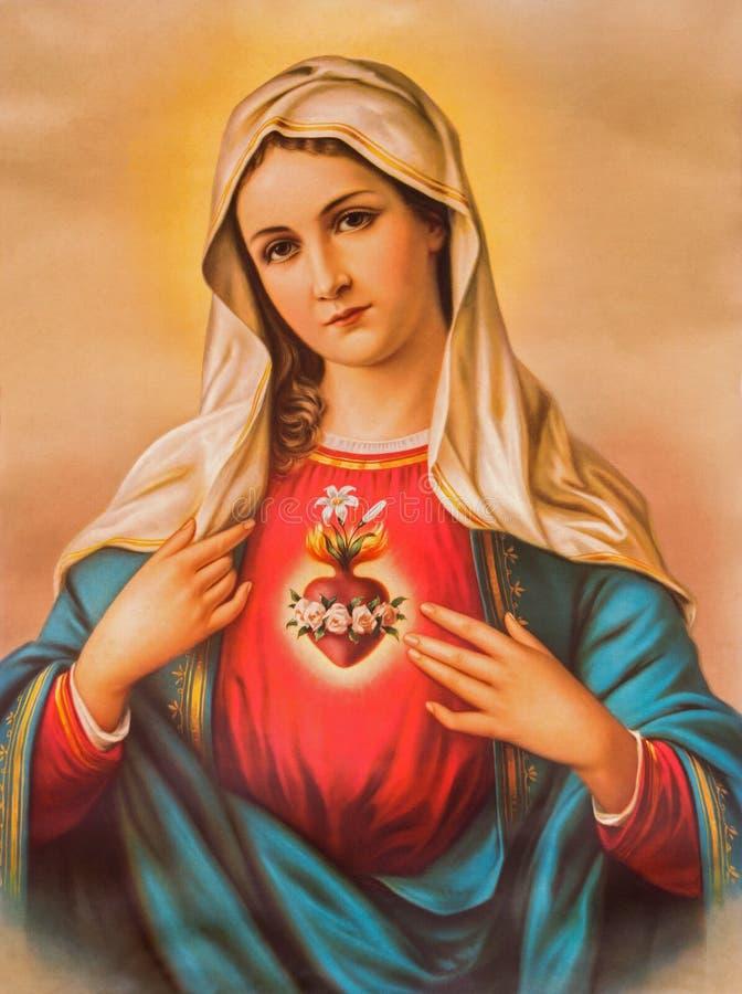 Сердце девой марии Типичное католическое изображение напечатало в Германии от конца 19 цент первоначально неизвестным художником стоковые изображения