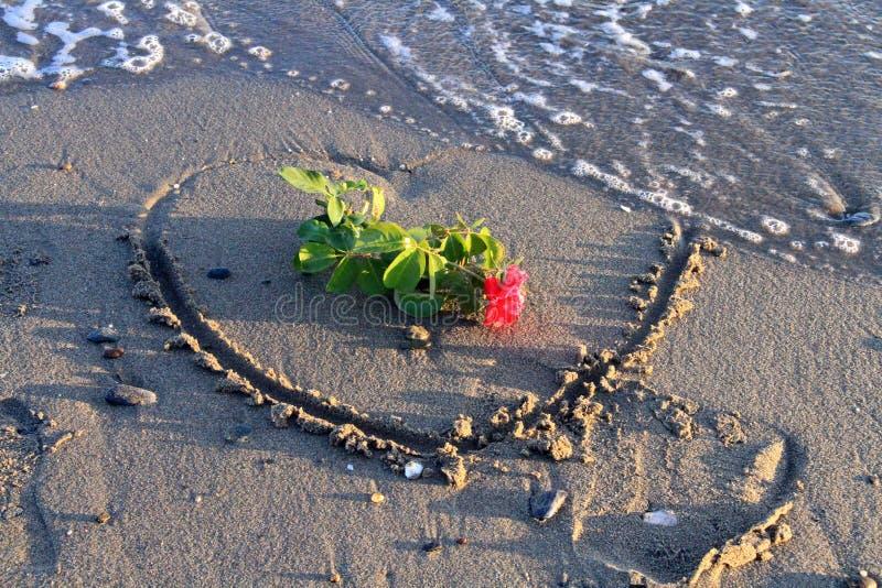 Сердце и подняло на пляж стоковая фотография rf