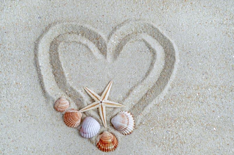 Сердце на пляже с раковиной стоковое изображение rf