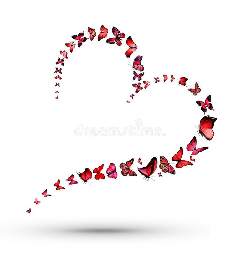 Сердце с бабочками бесплатная иллюстрация