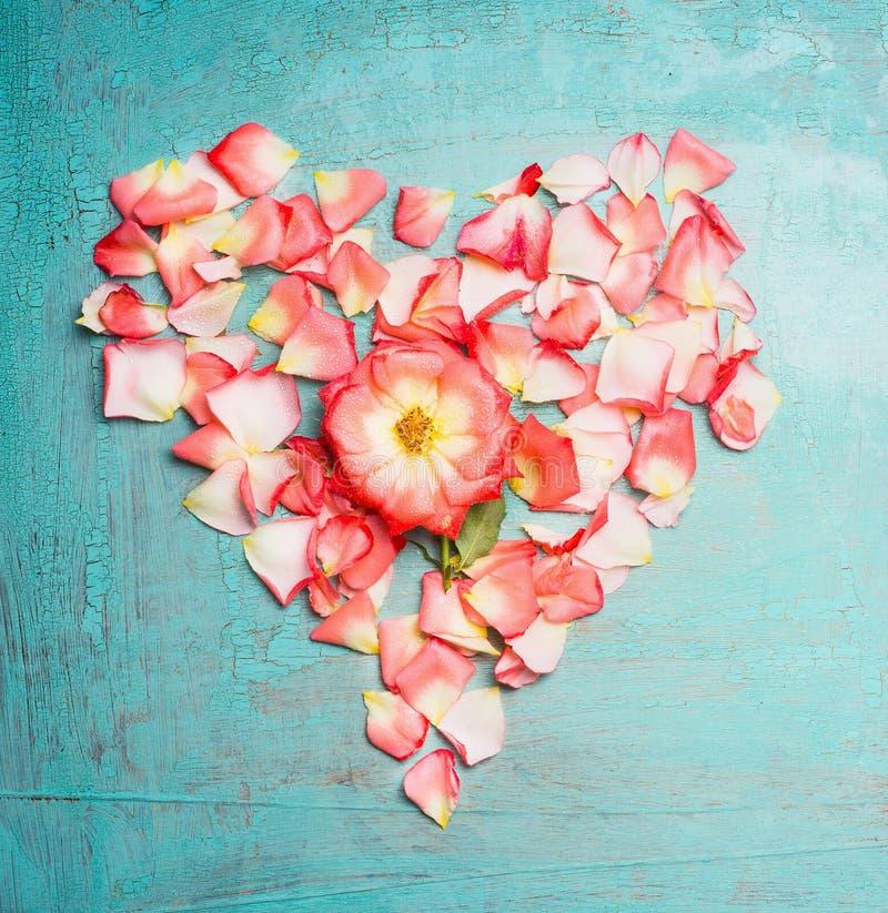 Сердце сделало ‹â€ ‹â€ из розовых бледных лепестков розы на голубой предпосылке бирюзы, взгляд сверху стоковые изображения rf