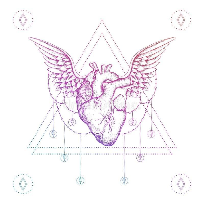 Сердце с крылами, татуировка dotwork цвета boho иллюстрация штока
