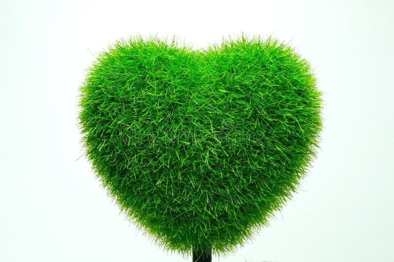 Сердце травы стоковое фото