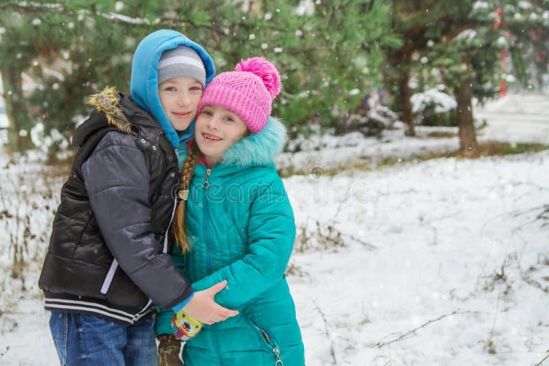 Сестра и брат среди снежного леса стоковое фото rf