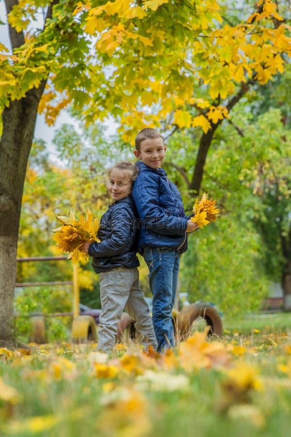 Сестра и брат стоя спиной к спине в осени стоковое изображение