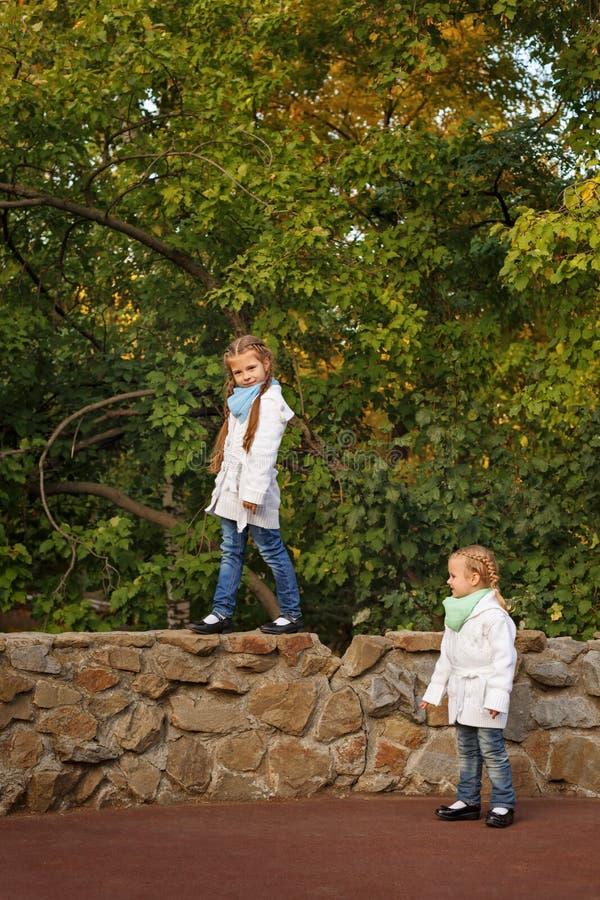 Download Сестры в парке осени стоковое фото. изображение насчитывающей исследуйте - 81812398