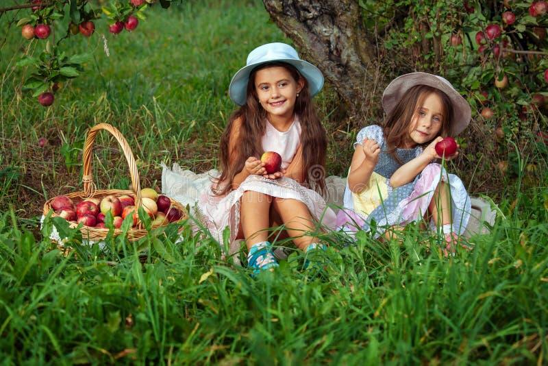 Сестры девушки 2 жмут предпосылку зеленой травы яблок рудоразборки корзины шляпы деревьев сада красную розовую стоковые фото