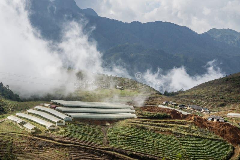 Сети ферм стоковое изображение rf