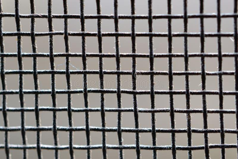 Сетка от комаров стоковое фото rf