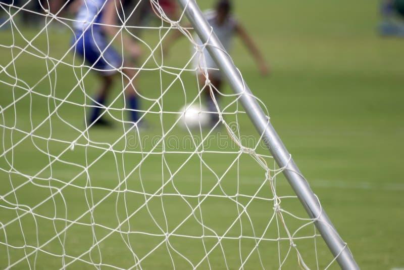 сетчатый футбол стоковые фото