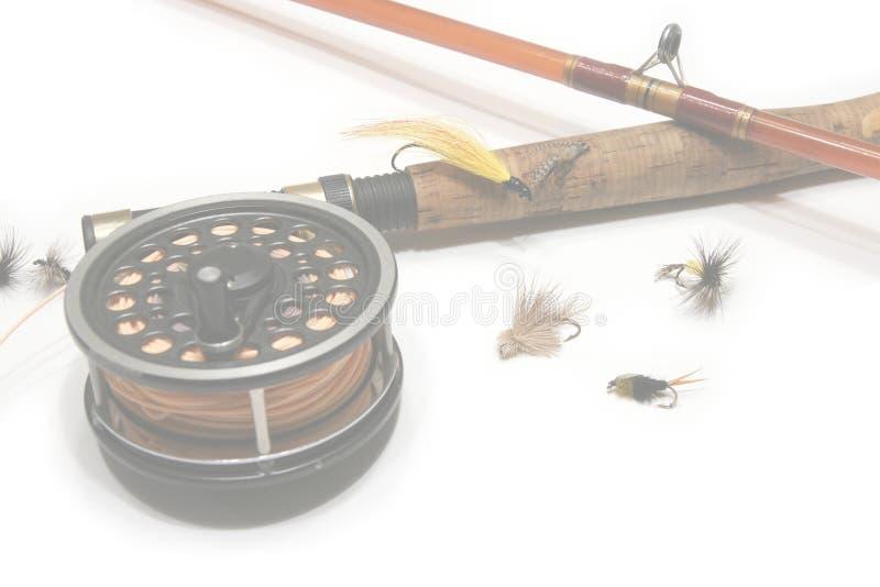 сеть мухы рыболовства предпосылки стоковые фото