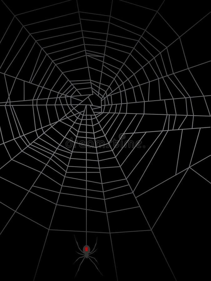 сеть паука eps иллюстрация штока