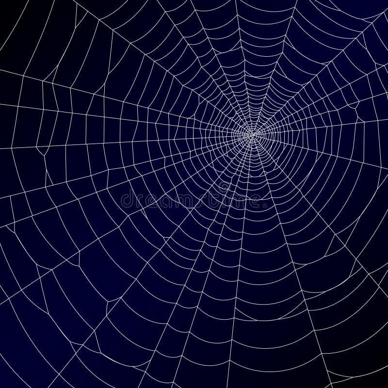 сеть паука s иллюстрация штока