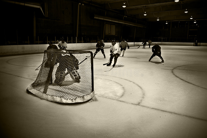 сеть хоккея стоковое изображение