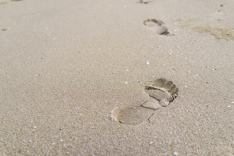 Селективный фокус на большом следе ноги на песке как жулик путешествием жизни стоковые фотографии rf