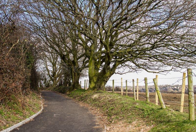 Сельская местность в Бирмингеме стоковое фото rf