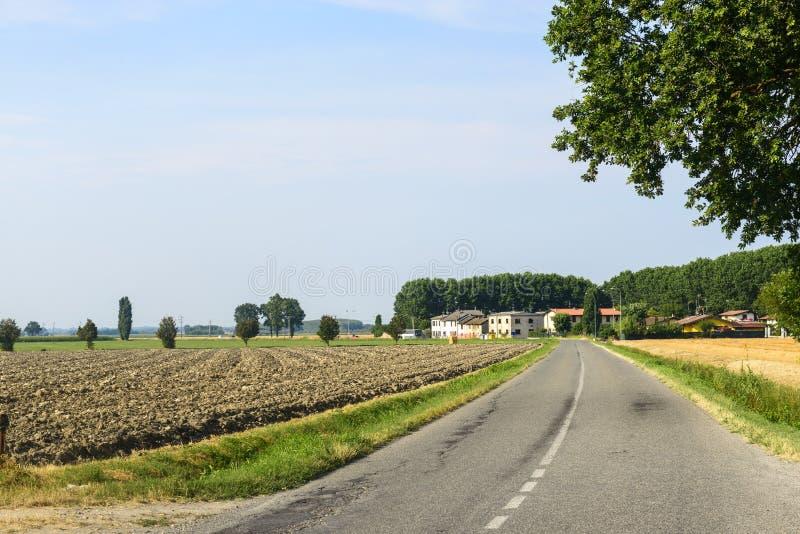 Сельская местность около Павии стоковые изображения rf