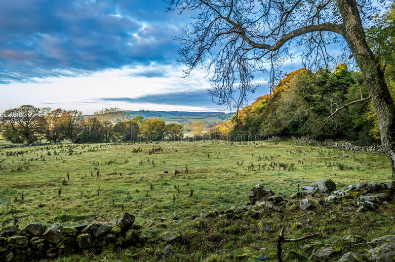 Сельская местность осени в Ирландии стоковая фотография rf