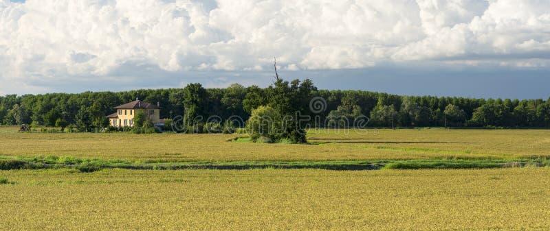 Сельская местность Павии (Италия) стоковая фотография