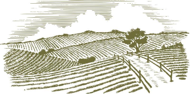 Сельская местность Woodcut иллюстрация вектора