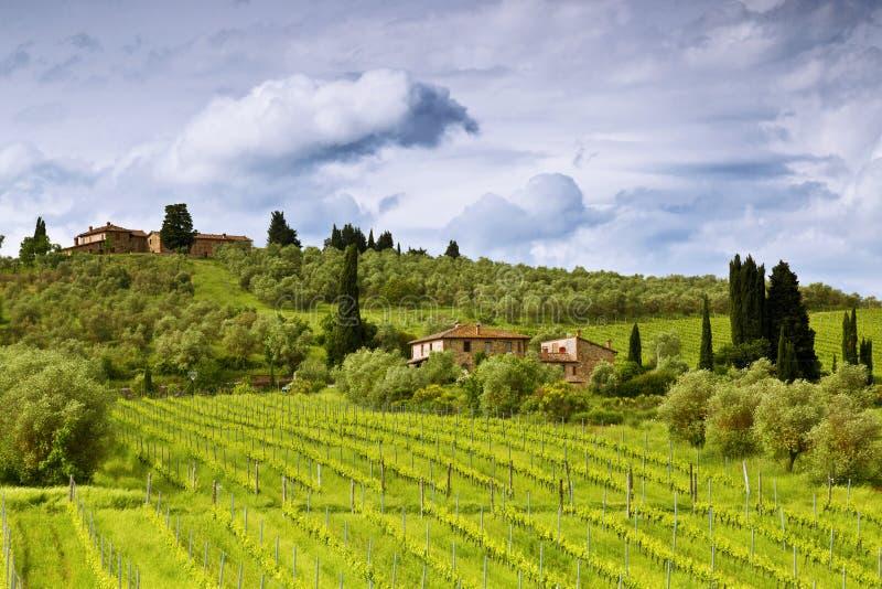 Download Сельский ландшафт в Тоскане, Италии Стоковое Изображение - изображение насчитывающей никто, лужки: 41654585