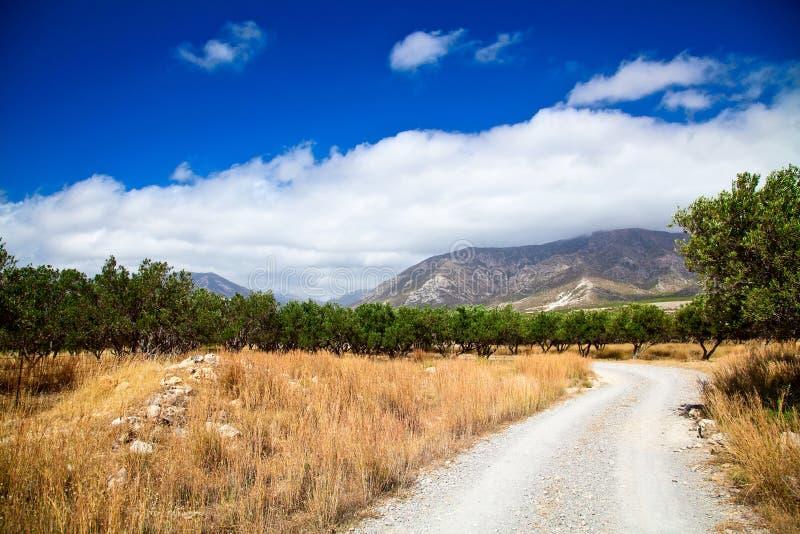 Сельский ландшафт Греции стоковое изображение