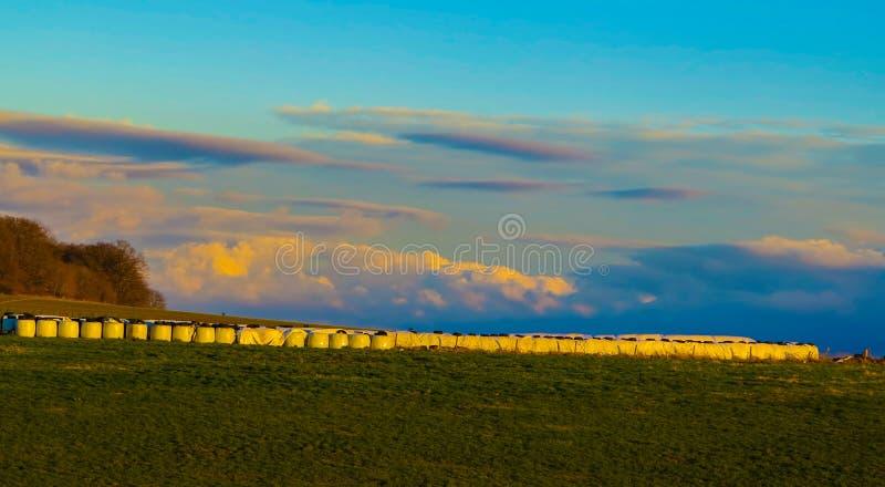 Сельский ландшафт с соломой свертывает на заходе солнца стоковое изображение rf